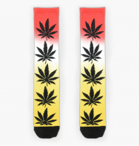 HUF - Plantlife Gradient Dye Socks